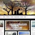 http://www.dauid.us/wp-content/uploads/web-design//sashersund-980x1024.jpg